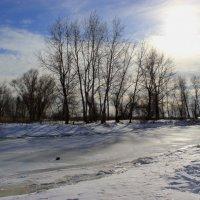 Замёрзшая речка :: Dr. Olver