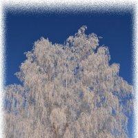 Был сильный мороз :: Светлана Лосева