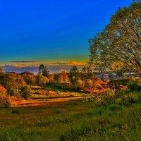Осенняя поляна :: Захар Горшенёв
