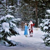 До следующего Нового Года :: Игорь(ИНЕЙ) Елифёров