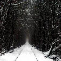 Сонная лощина... :: Андрей Толстов