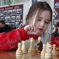 Шахматы :: Валерий Шердюков
