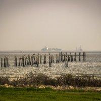 вид с берега вдаль :: Aleksey Donskov