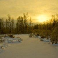 333 (Зимний золотой закат) :: Владимир Балюко