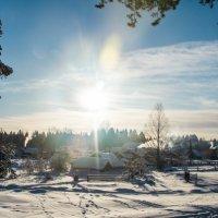 там теплее, чем на юге :: Marina Tikhonova