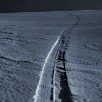 Долгая дорога в дюнах. :: Дмитрий Арсеньев