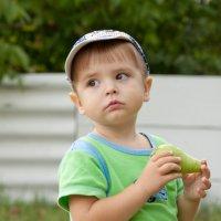 Вкусная груша :: Viktor Vishnevskiy
