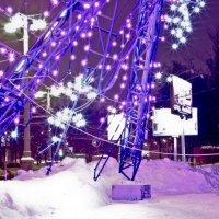 Снежинка :: Леонид Веденин