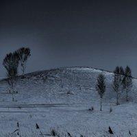 Лунная ночь. :: Дмитрий Арсеньев