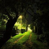 Ночная деревня :: Дмитрий Симонов