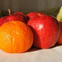 Яблочки и мандаринки :: Elena Balatskaya