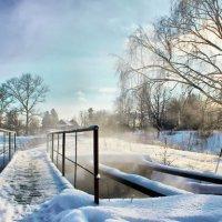 Зимнее утро :: Алла Мещерякова
