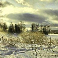 Зимние картинки :: Алла Мещерякова