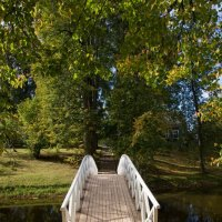 Горбатый мостик :: Андрей Агешин