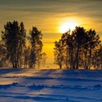 В лучах заходящего солнца :: Виктор Ковчин