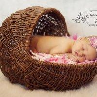 Baby :: Svetlana Pate