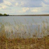 Степное озеро. :: Елизавета Успенская