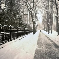 одинокий путник :: ivan vishnev