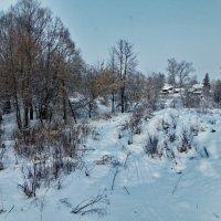 деревенька :: ольга кривашеева
