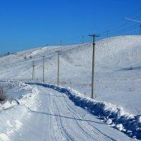 Путь домой. :: Дмитрий Арсеньев