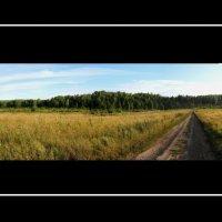 Дорога в поле :: Alex Larionov