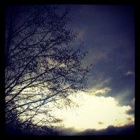На небе :: Настасья Матвеева