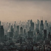 Пыльные джунгли :: Alexei Chukhutin