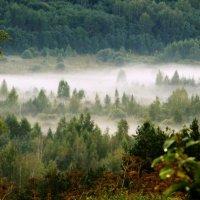 Туман :: Виктор Желенговский