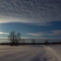 Между небом и землей :: Игорь Хохлов