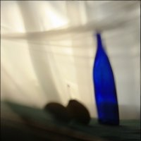 Синяя  бутылка. :: Валерия  Полещикова