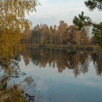 Лето кануло в омуте осени... :: Олег Козлов