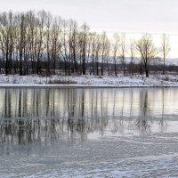 Стала, словно зеркало, река, напряжённо всё покоем дышит. :: Нина северянка