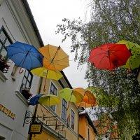 Зонтики в Сентендре :: Лара Dor