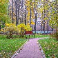 Осень 3 :: Sergey Izotov