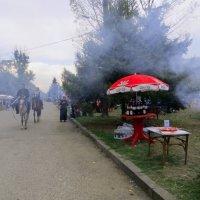 Сквозь дымок шашлыков :: Наталья Джикидзе (Берёзина)