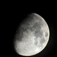 Вот такая сегодня луна красивая :: Семен Кактус