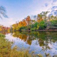 Осень, Осень... :: Gene Brumer