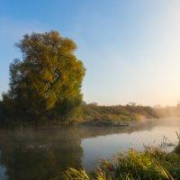 Утро на реке :: Александр Ильин
