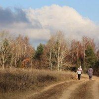 Осень, Климовск :: Владимир Холодницкий