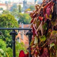 Осень :: Ксения Базарова