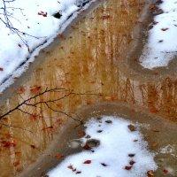Ноябрь, на Урале оттепель :: Геннадий Ячменев