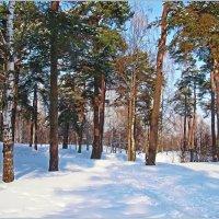Зимний день на Юрьевой горе. :: Роланд Дубровский