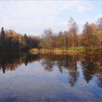 Природа. :: Антонина Гугаева