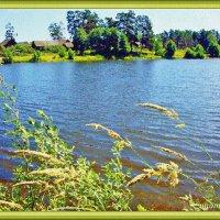Тишина на природе :: Лидия (naum.lidiya)