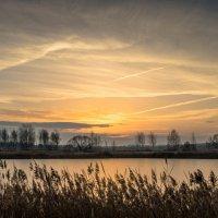Холодное прикосновение утренней зари. :: Олег Козлов