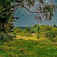 Перед грозой :: Виктор Филиппов