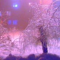 Ледяной дождь :: Григорий Кучушев