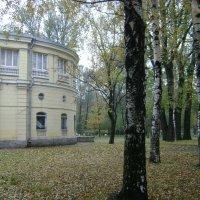 Осень :: Марина Домосилецкая