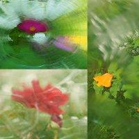 цветы подсознания. :: Елена Мартынова