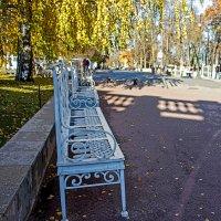 В Екатерининском парке. :: Александр Лейкум